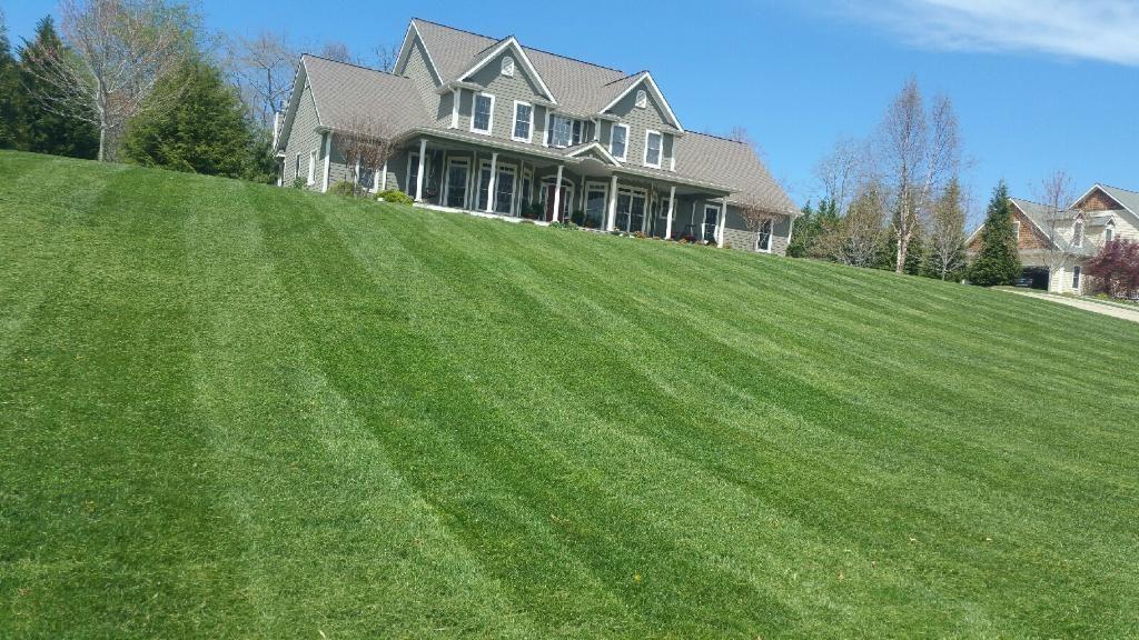 Lawn Care & Maintenance Services